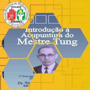 Acupuntura do Mestre Tung