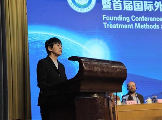 external-5 Conferência de Terapias Externas na WFCMS